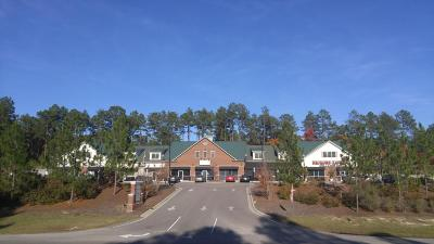 Moore County Commercial For Sale: 9735 Us Hwy 15-501