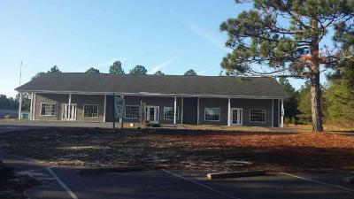 Moore County Commercial For Sale: 277 Macdougall Drive