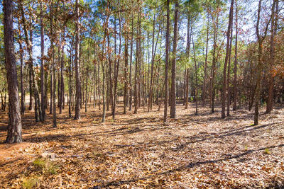 Southern Pines Residential Lots & Land For Sale: 4 Masters Ridge Place