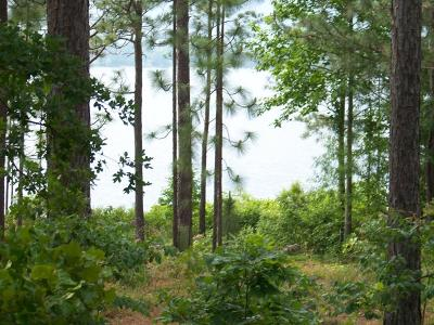 West End NC Residential Lots & Land For Sale: $295,000