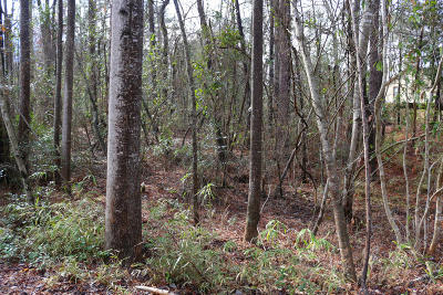 Pinehurst NC Residential Lots & Land Active/Contingent: $17,000