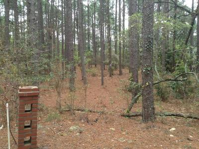 Southern Pines Residential Lots & Land For Sale: Hill Rd.