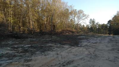 Pinehurst Residential Lots & Land For Sale: 1020 Chicken Plant Road