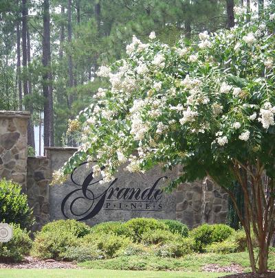 Jackson Springs Residential Lots & Land For Sale: 495 Grande Pines Vista