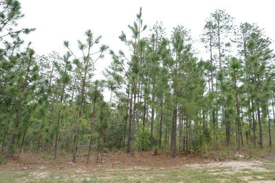 Whispering Pines Residential Lots & Land For Sale: 375 Ave Of The Carolinas