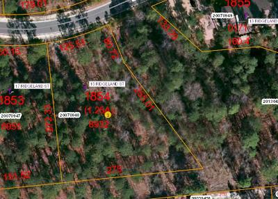 Forest Creek Residential Lots & Land For Sale: 15 Ridgeland Street