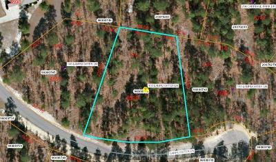 Residential Lots & Land For Sale: 165 Lamplighter Lane