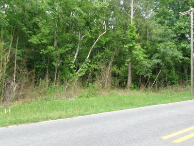 Residential Lots & Land For Sale: Steele St. Street