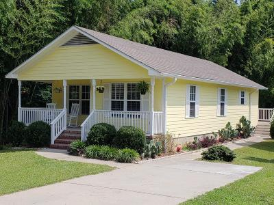Southern Pines Single Family Home For Sale: 245 W Massachusetts Avenue
