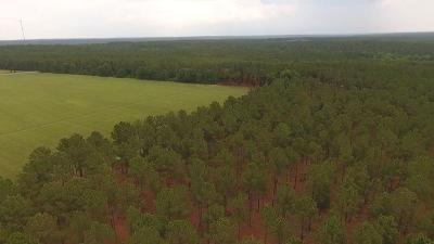 Jackson Springs Residential Lots & Land For Sale: Grande Pines Vista