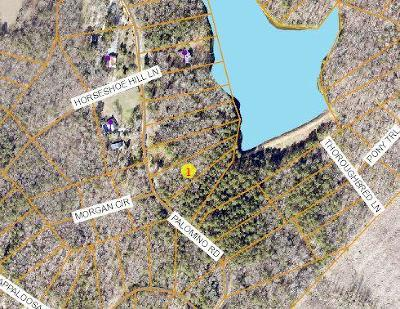 Carthage Residential Lots & Land For Sale: 125 Palomino Road