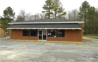 Commercial For Sale: 308 N Main Street