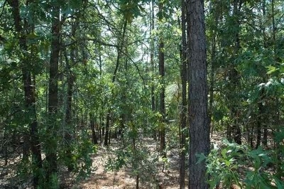 Foxfire Residential Lots & Land For Sale: 18 Oak Hill Drive