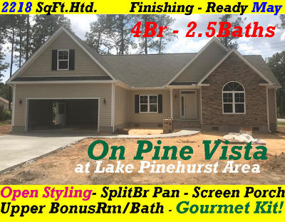 Moore County Single Family Home For Sale: 10 Pine Vista Drive