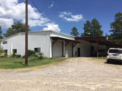Moore County Commercial For Sale: 337 Brothers Road
