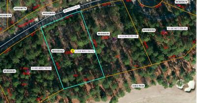 Pinehurst Residential Lots & Land For Sale: 12 Monteith Place