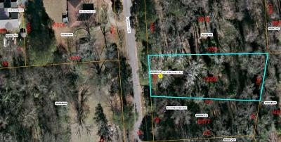 Carthage Residential Lots & Land For Sale: 115 Pinckney Road Road