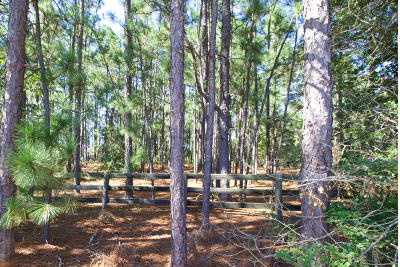 Southern Pines Residential Lots & Land For Sale: N May Street