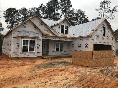 Southern Pines Single Family Home Active/Contingent: 330 N Bracken Fern Lane