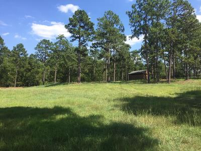 Residential Lots & Land For Sale: 209 New Haven Place