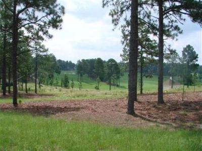Southern Pines Residential Lots & Land For Sale: 52 Plantation Drive