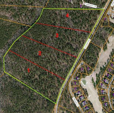 Residential Lots & Land For Sale: 920 Lucas Road