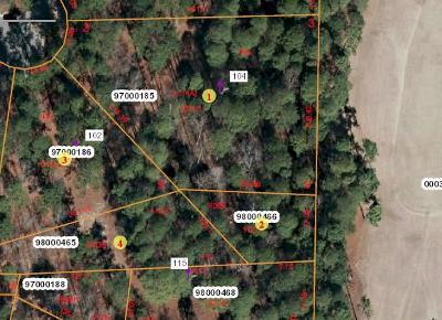 Pinehurst Residential Lots & Land For Sale: 102 & 104 Kincaid Place