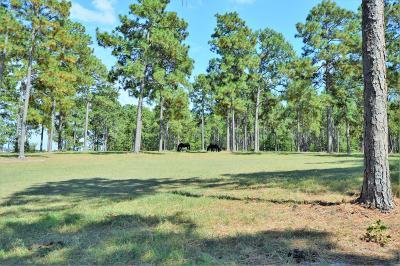 Vass Residential Lots & Land Active/Contingent: 470 NE Pelham Trail