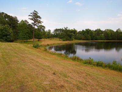 Cameron Residential Lots & Land For Sale: Pilson Road