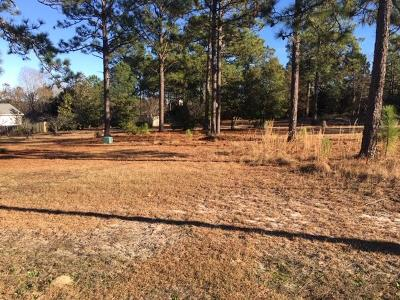 Southern Pines Residential Lots & Land Active/Contingent: Lot 2a East Indiana Ext