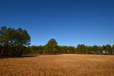 Cameron Residential Lots & Land For Sale: 105 Foxwood Close Road