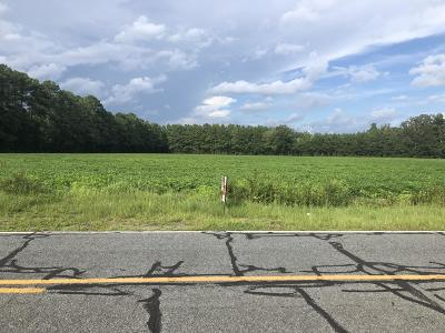Residential Lots & Land For Sale: Lot 1-A Yellowskin Road