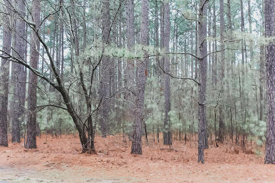 Residential Lots & Land For Sale: Deercroft Drive