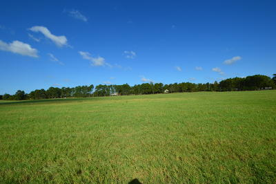 Southern Pines Residential Lots & Land For Sale: 420 Battlewick Road
