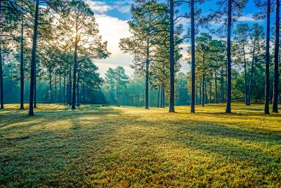 Residential Lots & Land For Sale: 2982 Lakebay Road