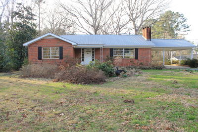 Single Family Home For Sale: 251 N Green Street