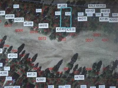 Residential Lots & Land For Sale: 526 Bald Eagle Drive