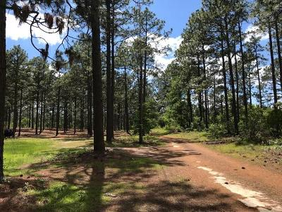 Southern Pines Residential Lots & Land For Sale: 168 Whitt Court
