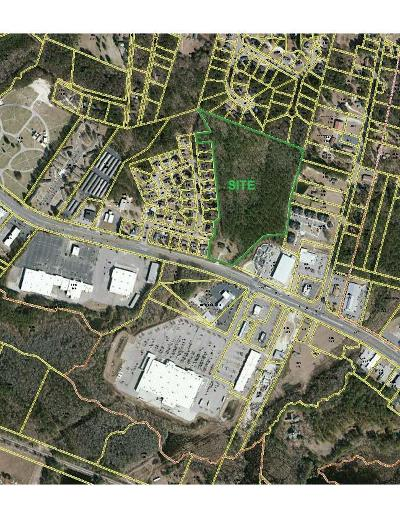 Commercial For Sale: 829 Hwy 74
