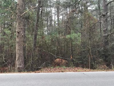 Southern Pines Residential Lots & Land For Sale: 1685 E Indiana Avenue