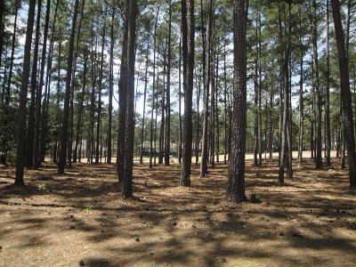 Pinewild Cc Residential Lots & Land For Sale: 11 Whitehaven Drive