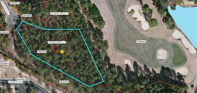Southern Pines Residential Lots & Land For Sale: 265 Kings Ridge Court