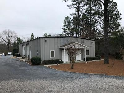 Moore County Commercial For Sale: 324 Fields Drive