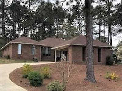 Southern Pines Single Family Home For Sale: 360 E Hedgelawn Way