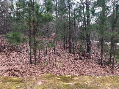 Residential Lots & Land For Sale: Lot #12 Blue Water Ct