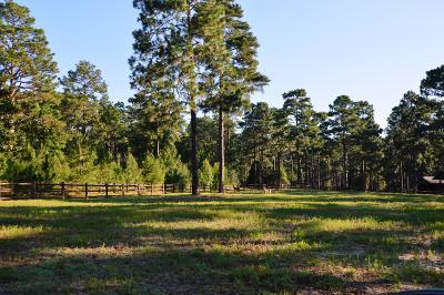 Southern Pines Residential Lots & Land For Sale: 415 Tremont Street