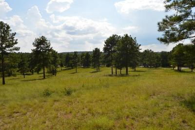 Residential Lots & Land For Sale: 780 Broken Ridge Trail