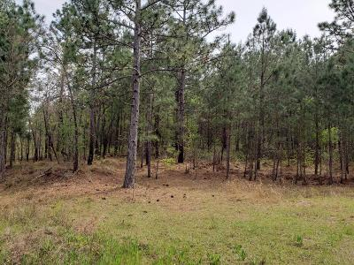 Residential Lots & Land For Sale: 10 Shawn Lane #10
