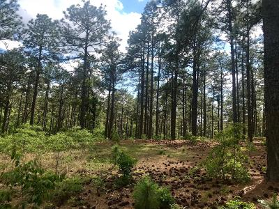 Ccnc Residential Lots & Land For Sale: 755 Lake Dornoch Drive