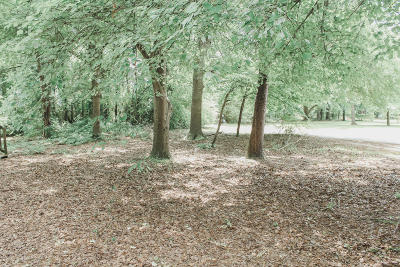 Residential Lots & Land For Sale: 22401 Pine Villa Drive